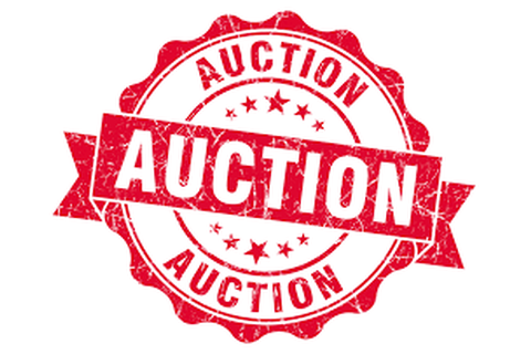 JFM Missions Auction